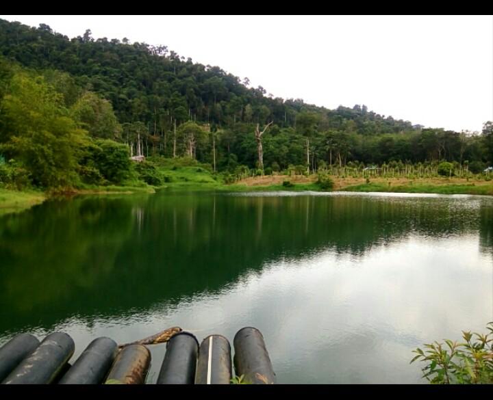 Bangkanesia